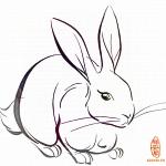 必发365手机登录首页兔怎么防小人