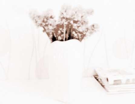 花瓶不只是摆设 卧室内花瓶的风水讲究