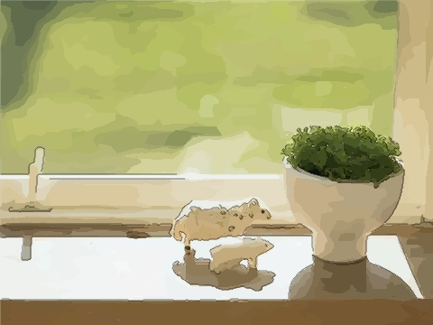 卧室内放置风水植物有哪些注意事项