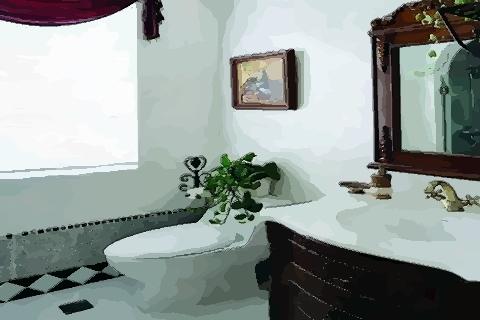 卫生间最好的风水颜色 选择黑白色最稳定