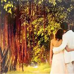 婚姻与五行的关系