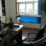 在办公室养鱼鱼缸不可摆放在哪些地方