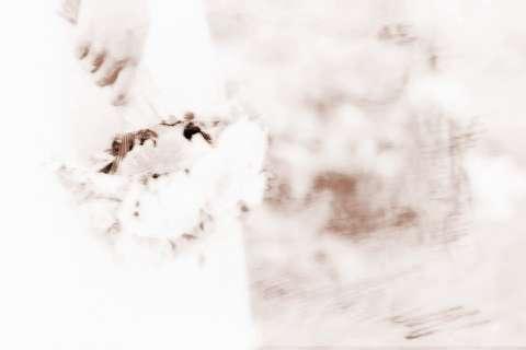 【八字不合的婚姻会怎样】揭秘从八字查婚姻是否幸福