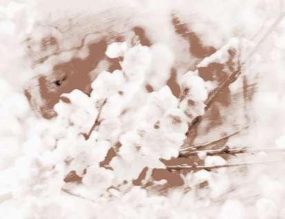 植物桃花剪纸步骤