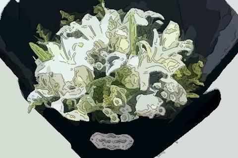 清明节,扫墓,花