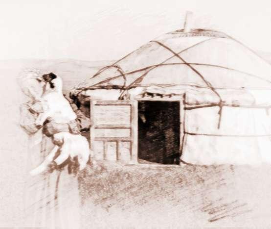 蒙古族的文化特征包含了哪些
